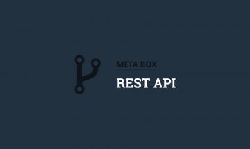 show custom fields in rest api